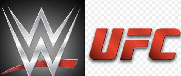 UFC vs WWE.png