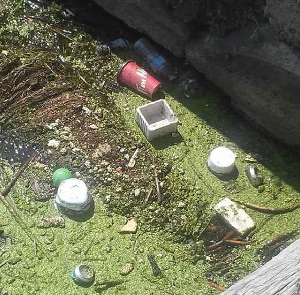 Waste in Quinte West water.png