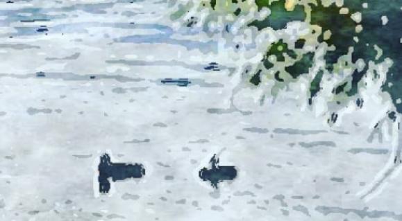 cropped-cartoon-pro-centennial-park-trenton-ontario.png