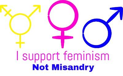 feminism not misandry