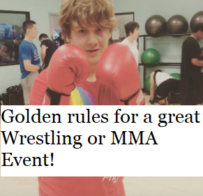 Golden rules for a great Wrestling or MMAEvent!