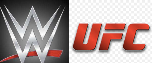 Diana's preference in comparing: WWE vsUFC.