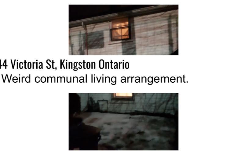 544 Victoria St, Kingston Ontario. The Weird communal livingarrangement.